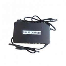 Charger 48 Volt Lead Acid Battery Reverse Polarity For Most GIO and Other Models